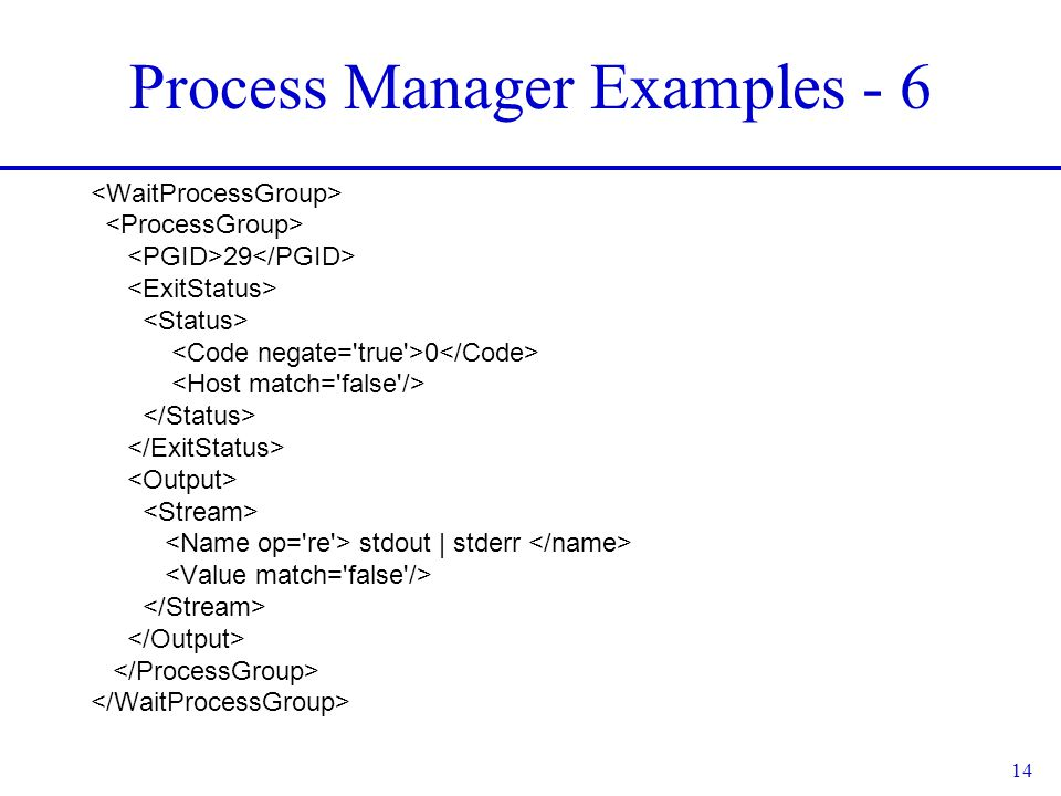 14 Process Manager Examples - 6 29 0 stdout | stderr