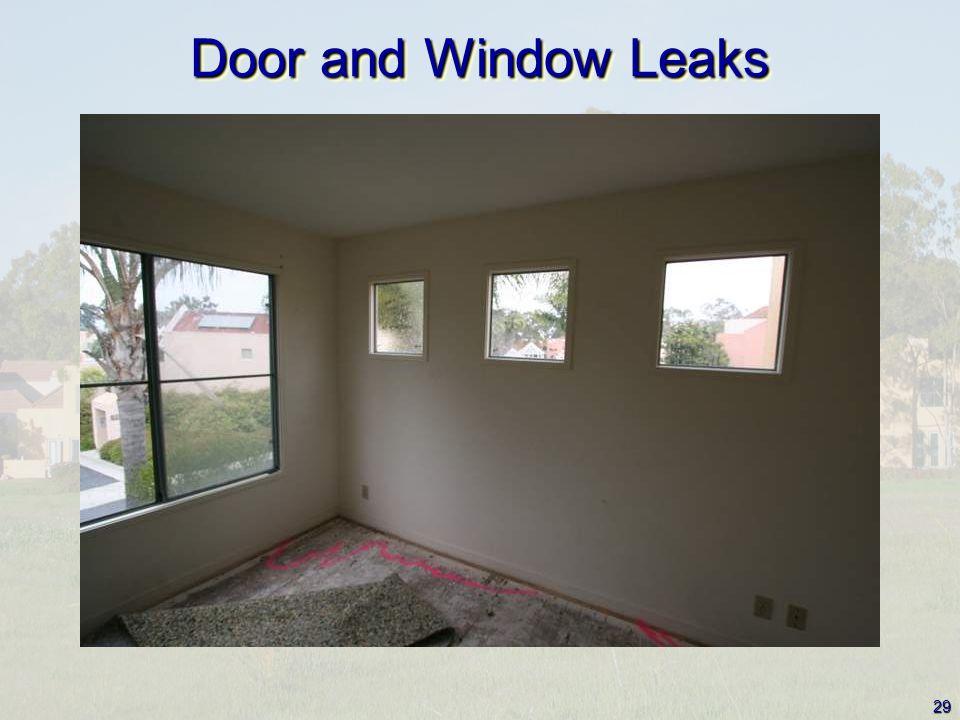 29 Door and Window Leaks