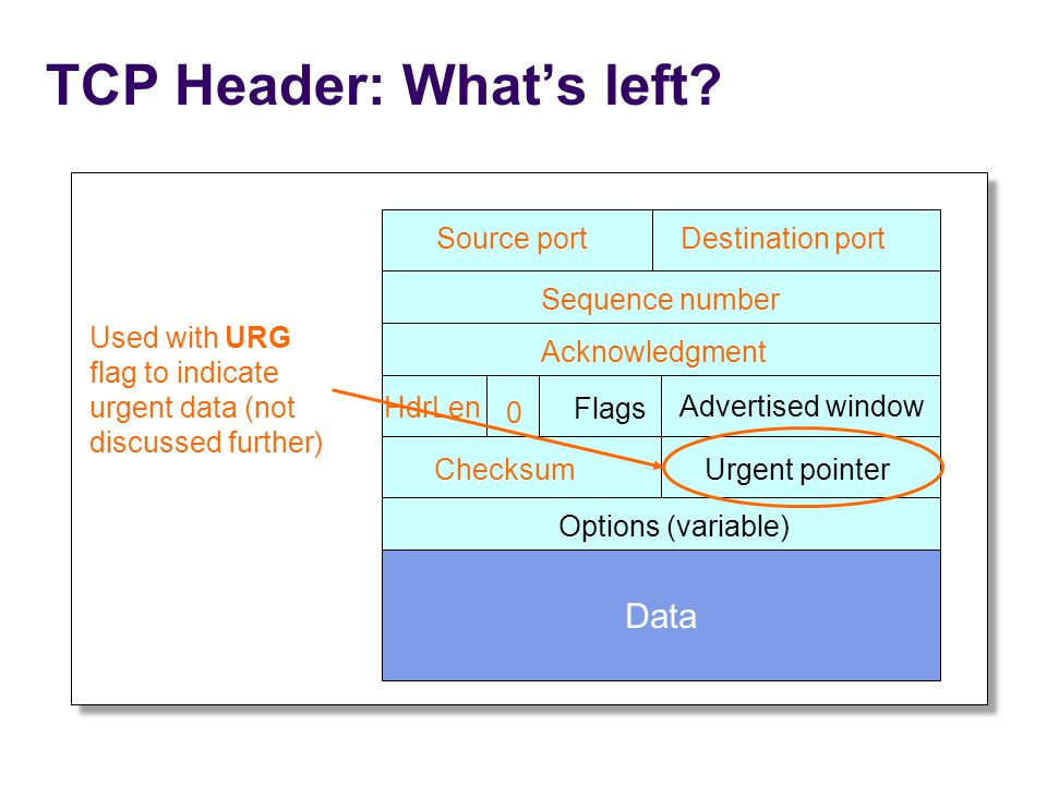 TCP Header: What's left.