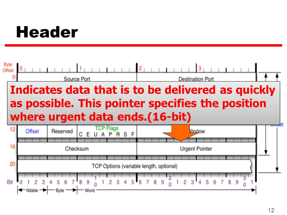 12 Header Indicates data that is to be delivered as quickly as possible. This pointer specifies the position where urgent data ends.(16-bit)