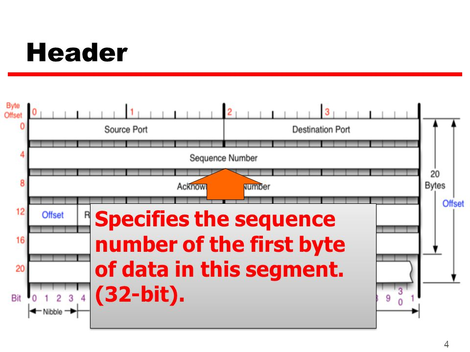 4 Header Specifies the sequence number of the first byte of data in this segment. (32-bit). Specifies the sequence number of the first byte of data in