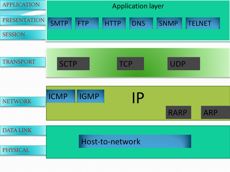 APPLICATION PRESENTATION SESSION TRANSPORT NETWORK DATA LINK PHYSICAL Application layer SMTPFTPHTTPDNSSNMPTELNET SCTPTCPUDP IP IGMP RARPARP Host-to-network ICMP