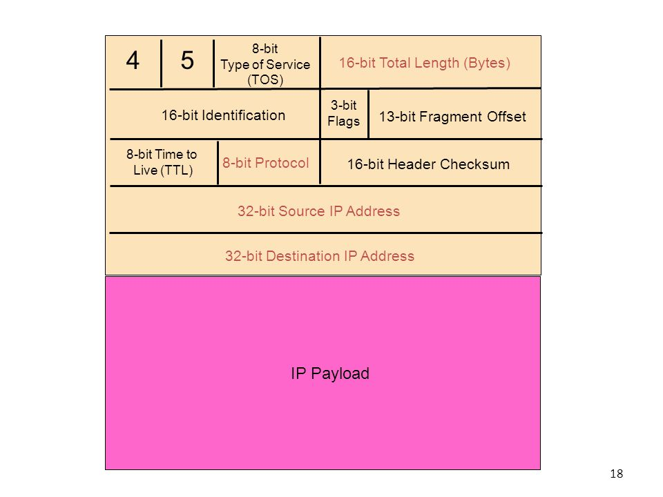 4 5 8-bit Type of Service (TOS) 16-bit Total Length (Bytes) 16-bit Identification 3-bit Flags 13-bit Fragment Offset 8-bit Time to Live (TTL) 8-bit Protocol 16-bit Header Checksum 32-bit Source IP Address 32-bit Destination IP Address IP Payload 18