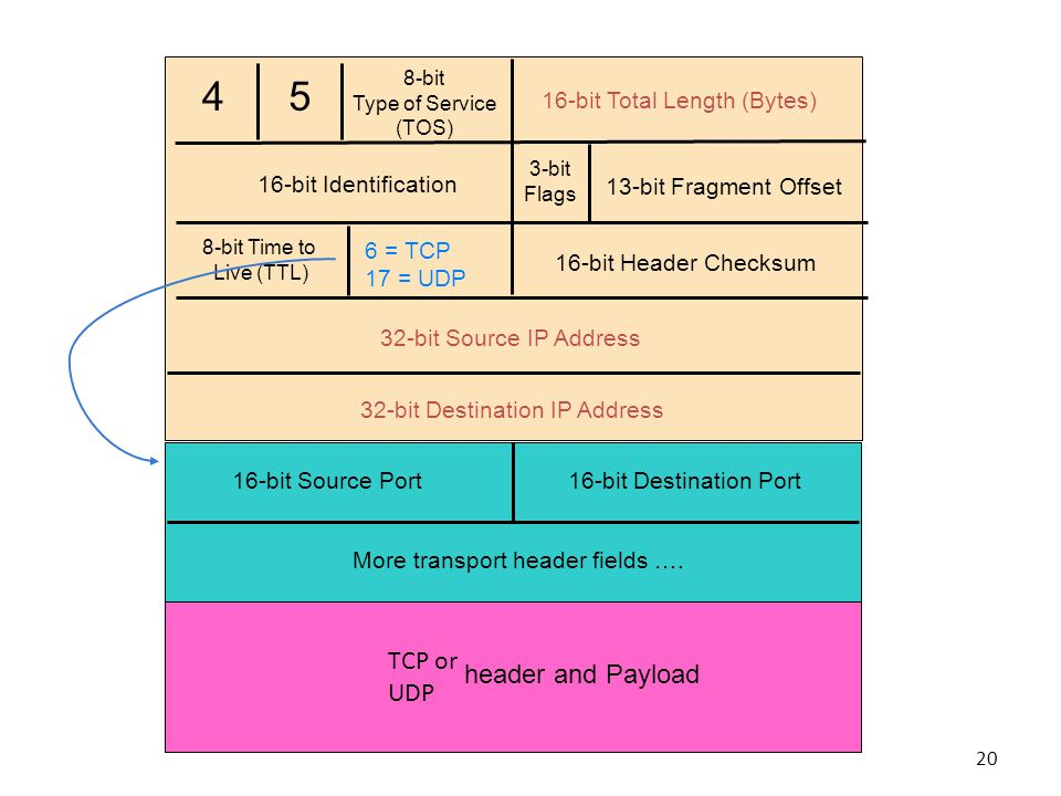 4 5 8-bit Type of Service (TOS) 16-bit Total Length (Bytes) 16-bit Identification 3-bit Flags 13-bit Fragment Offset 8-bit Time to Live (TTL) 6 = TCP 17 = UDP 16-bit Header Checksum 32-bit Source IP Address 32-bit Destination IP Address 16-bit Source Port16-bit Destination Port More transport header fields ….