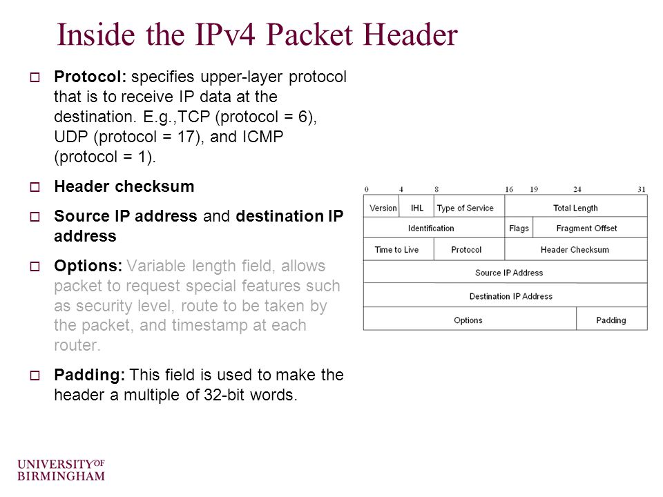 Inside the IPv4 Packet Header  Protocol: specifies upper-layer protocol that is to receive IP data at the destination.
