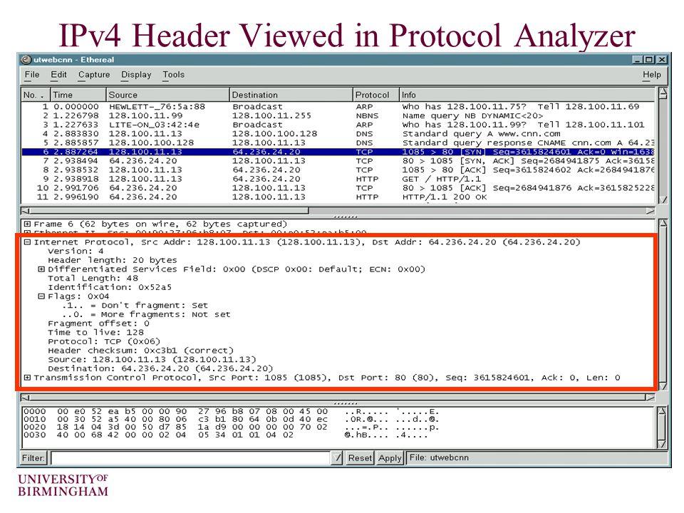 IPv4 Header Viewed in Protocol Analyzer
