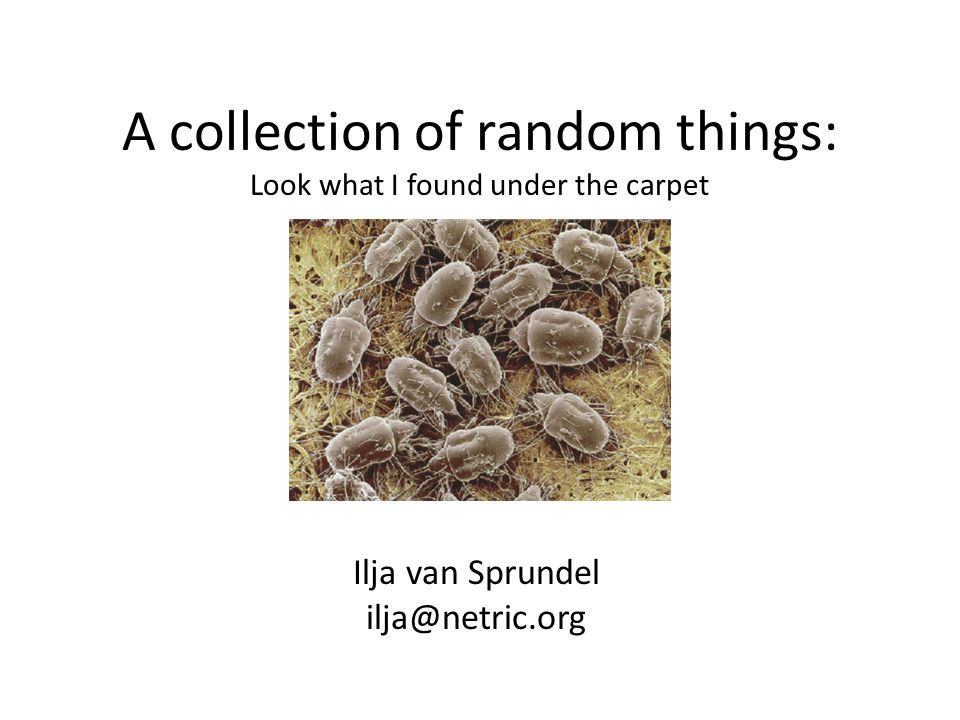 A collection of random things: Look what I found under the carpet Ilja van Sprundel ilja@netric.org