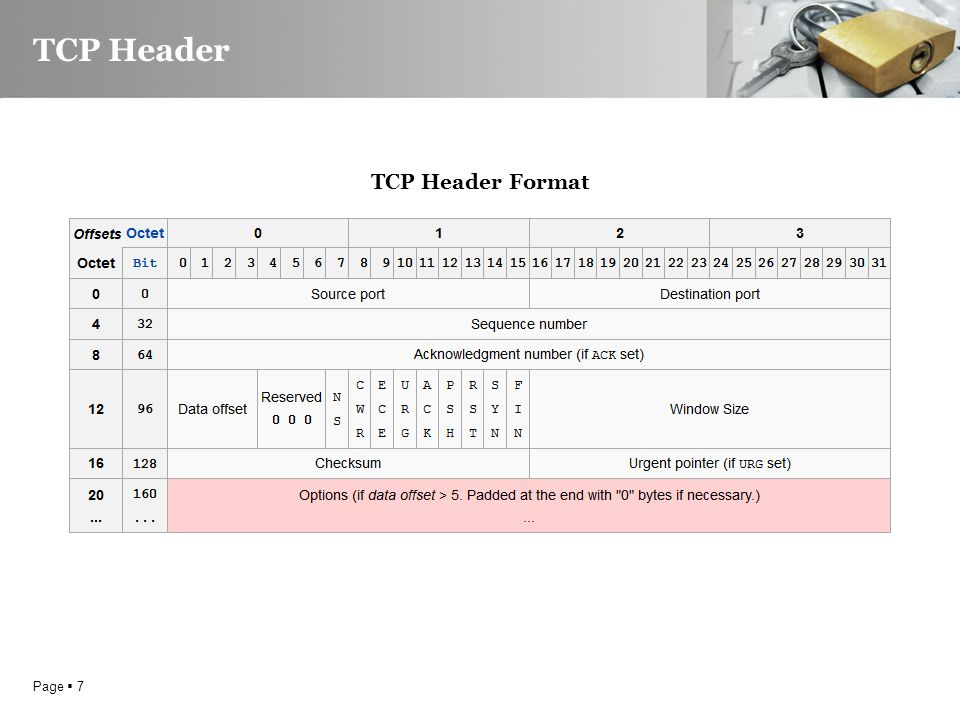Page  7 TCP Header TCP Header Format