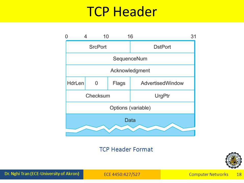 TCP Header Dr. Nghi Tran (ECE-University of Akron) ECE 4450:427/527Computer Networks 18 TCP Header Format