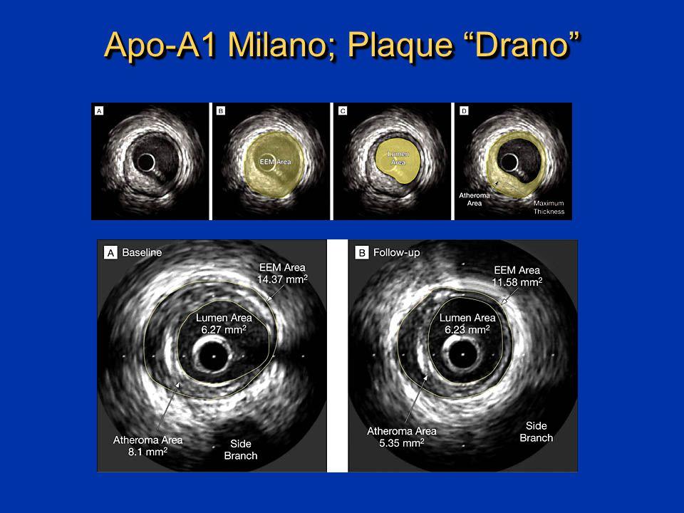 Apo-A1 Milano; Plaque Drano
