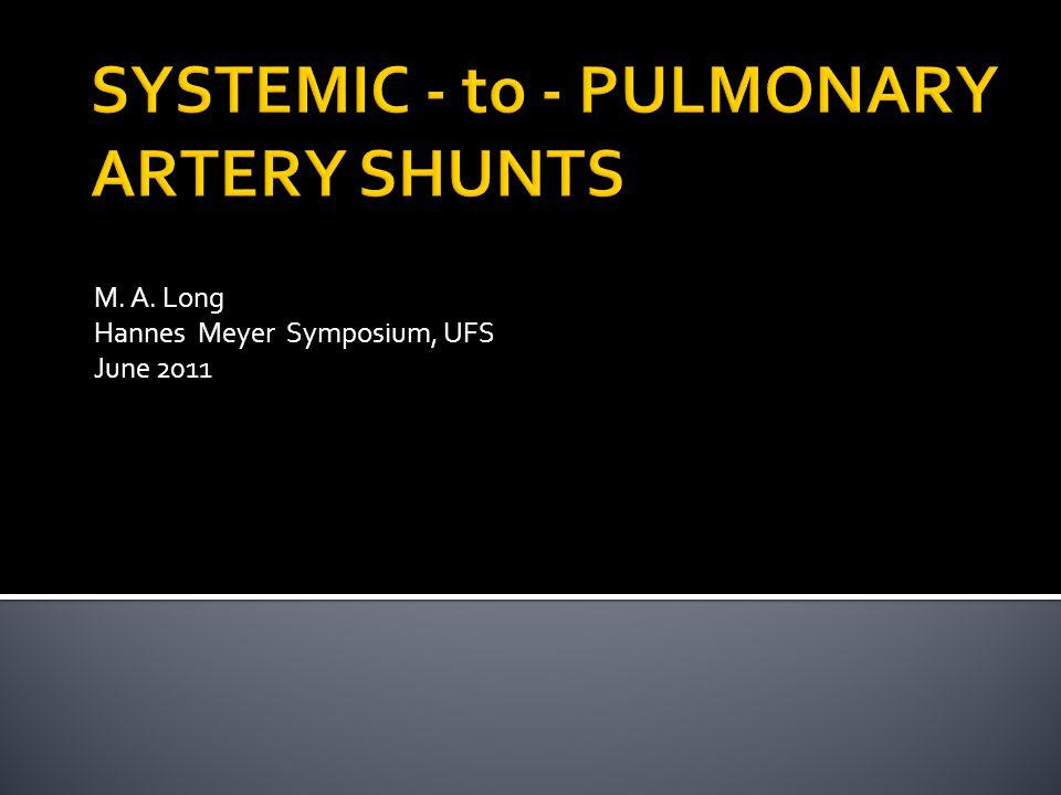 M. A. Long Hannes Meyer Symposium, UFS June 2011