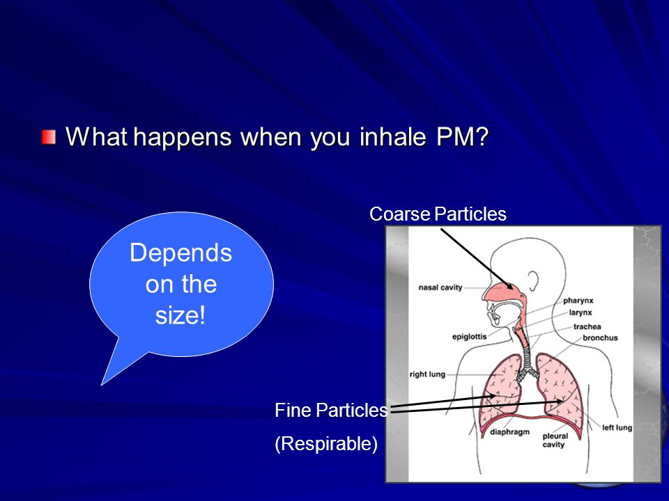What happens when you inhale PM? Depends on the size! Coarse Particles Fine Particles (Respirable)