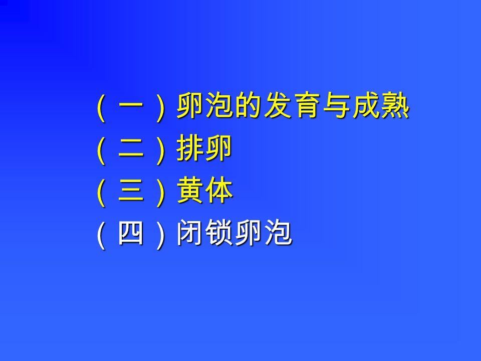 (一)卵泡的发育与成熟(二)排卵(三)黄体(四)闭锁卵泡