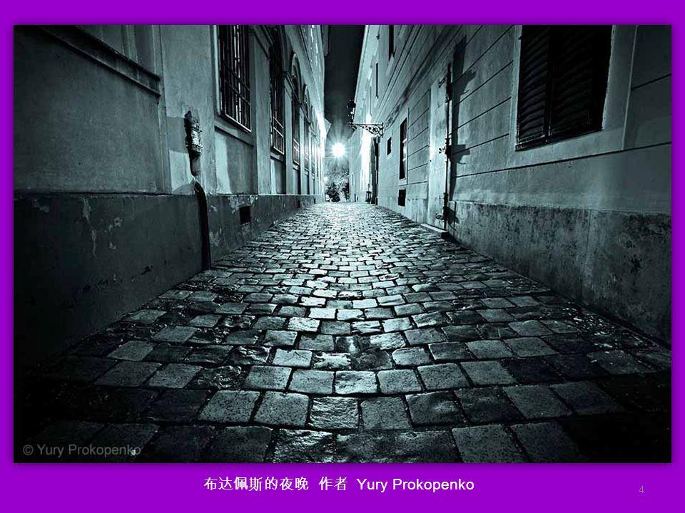 功夫壁虎 作者 shikhei goh (国家地理大赛一等奖雨中蜻蜓的作者, 大家对那张应该有印象) 3