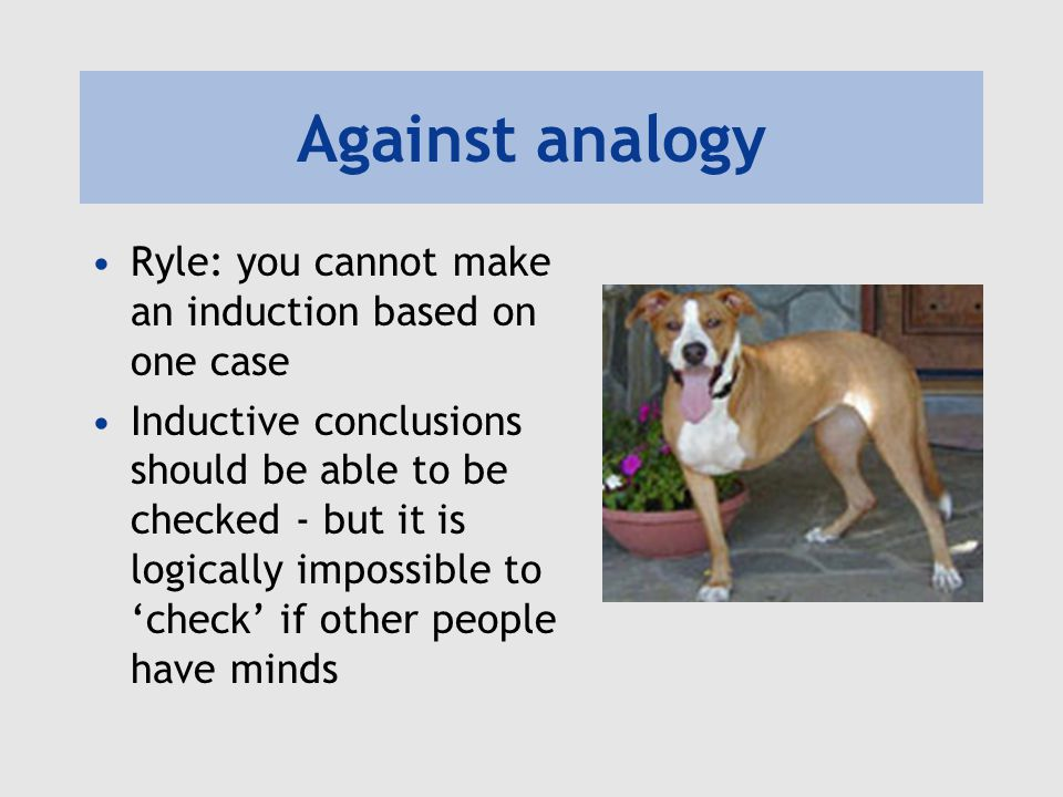Against analogy Ryle: you cannot make an induction based on one case Inductive conclusions should be able to be checked - but it is logically impossible to 'check' if other people have minds