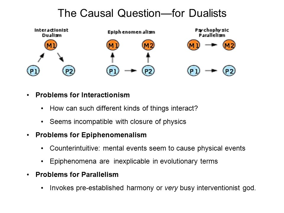 The Causal Question—for Dualists Problems for Interactionism How can such different kinds of things interact? Seems incompatible with closure of physi