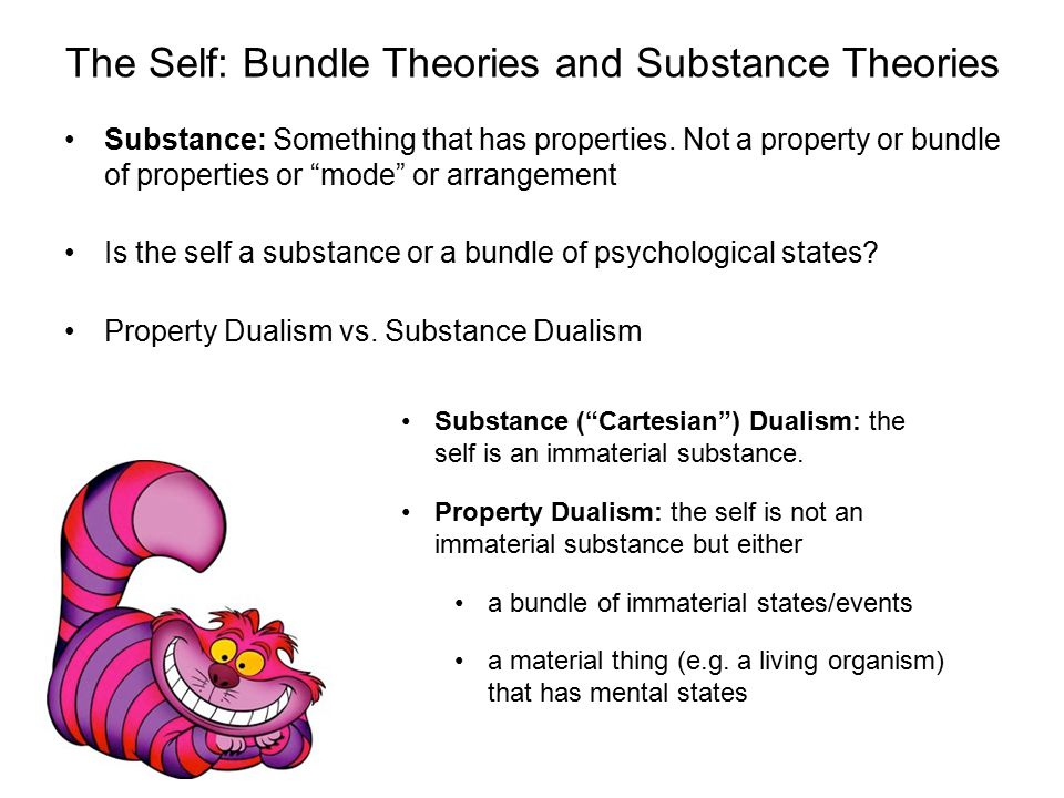 """The Self: Bundle Theories and Substance Theories Substance: Something that has properties. Not a property or bundle of properties or """"mode"""" or arrange"""