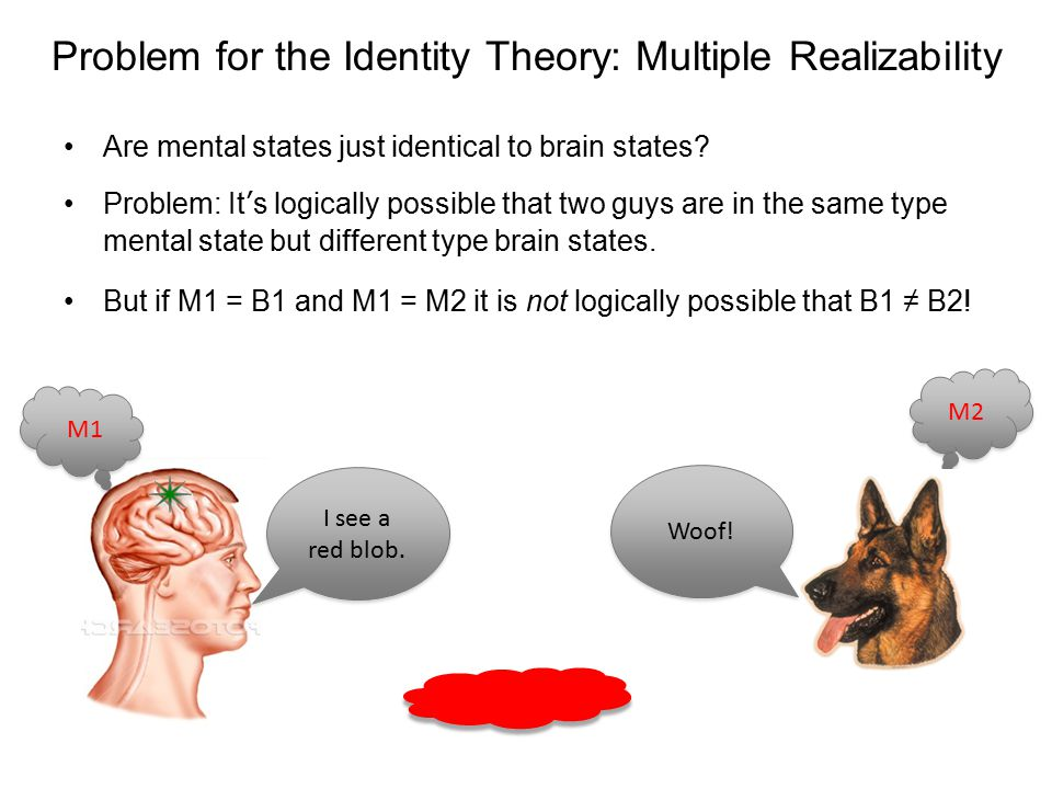 Problem for the Identity Theory: Multiple Realizability Are mental states just identical to brain states? Problem: It's logically possible that two gu