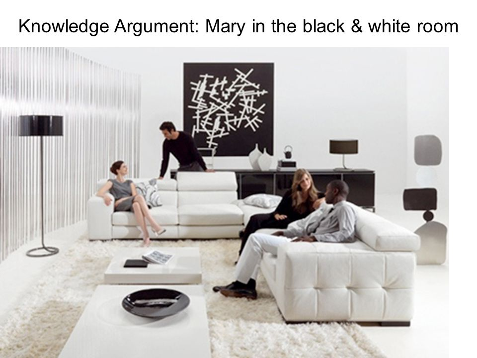 Mary is a brilliant scientist who is…forced to investigate the world from a black and white room via a black and white television monitor. She special