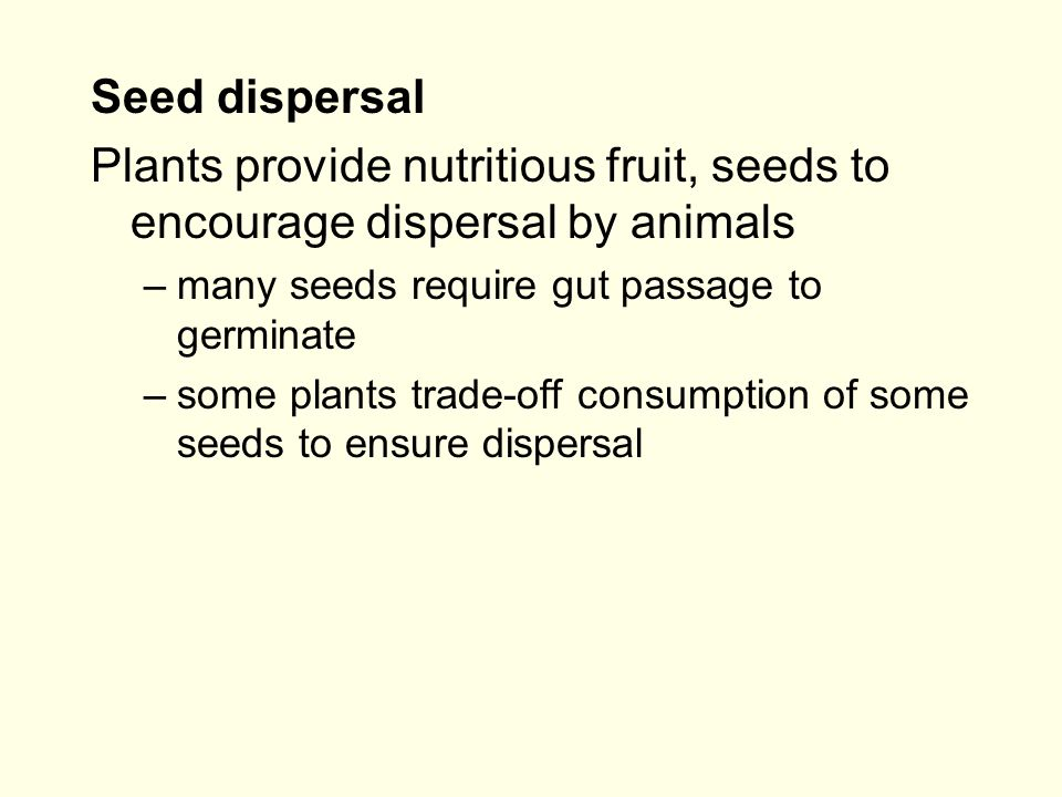Seed dispersal Plants provide nutritious fruit, seeds to encourage dispersal by animals –many seeds require gut passage to germinate –some plants trade-off consumption of some seeds to ensure dispersal