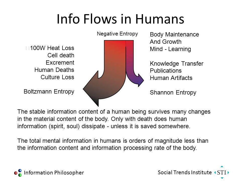 Information Philosopher Social Trends Institute Info Flows in Biology Environment Night Sky Boltzmann Entropy Protozoans Plants Animals Humans Shannon Entropy Every biological structure is a quantum mechanical structure.