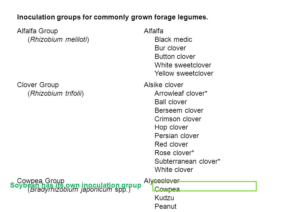 Inoculation groups for commonly grown forage legumes.