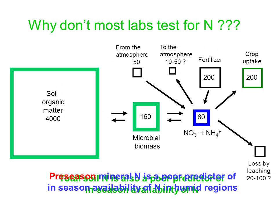 Why don't most labs test for N .