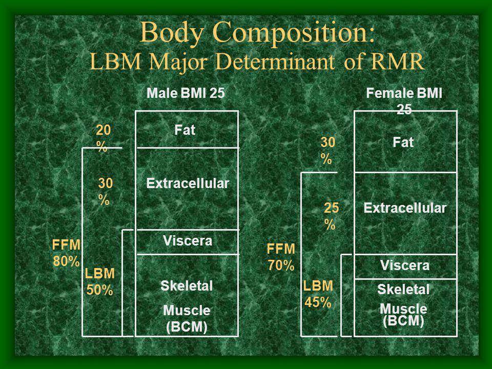 Body Composition: LBM Major Determinant of RMR Fat Extracellular Viscera Skeletal Muscle (BCM) Fat Extracellular Viscera Skeletal Muscle (BCM) 20 % Male BMI 25Female BMI 25 30 % LBM 50% 30 % FFM 70% 25 % LBM 45% FFM 80%