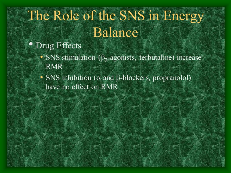 The Role of the SNS in Energy Balance Drug Effects SNS stimulation (  3 -agonists, terbutaline) increase RMR SNS inhibition (  and  -blockers, propranolol) have no effect on RMR