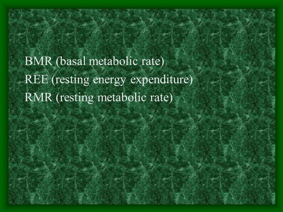 BMR (basal metabolic rate) REE (resting energy expenditure) RMR (resting metabolic rate)