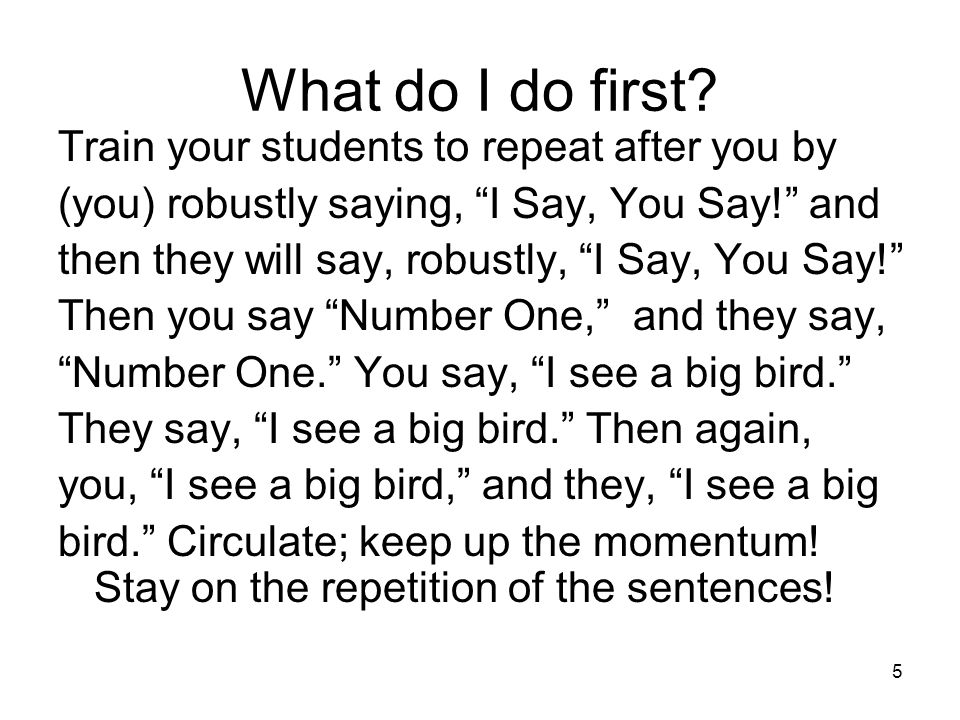 56 Start by saying: I Say, You Say! Students repeat I Say, You Say! PLANTS ARE IMPORTANT TO YOU.