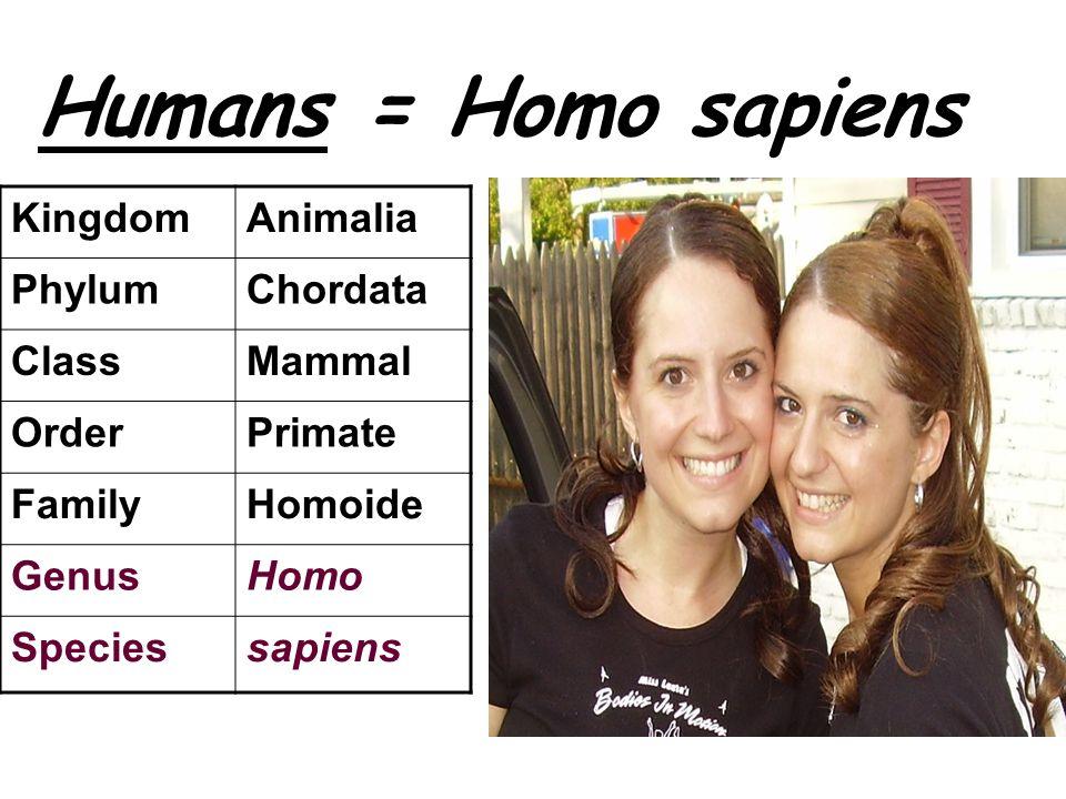 Humans = Homo sapiens KingdomAnimalia PhylumChordata ClassMammal OrderPrimate FamilyHomoide GenusHomo Speciessapiens