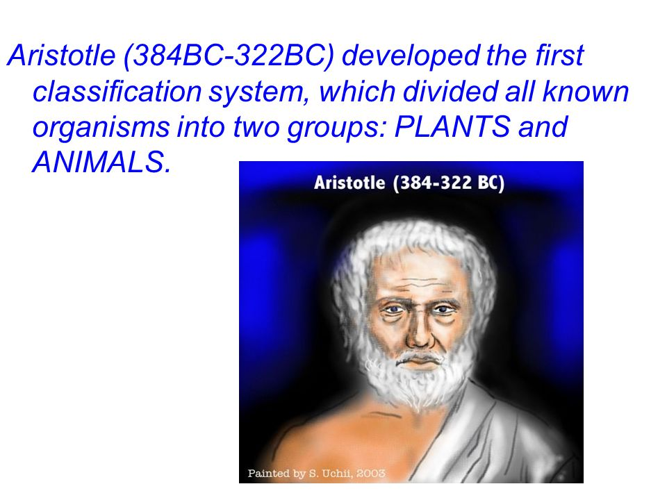 Aristotle then divided each of these main groups into 3 smaller groups.