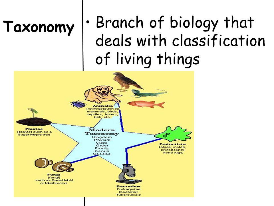 Carolus Linnaeus (1707-1778) like Aristotle, classified organisms according to their traits.