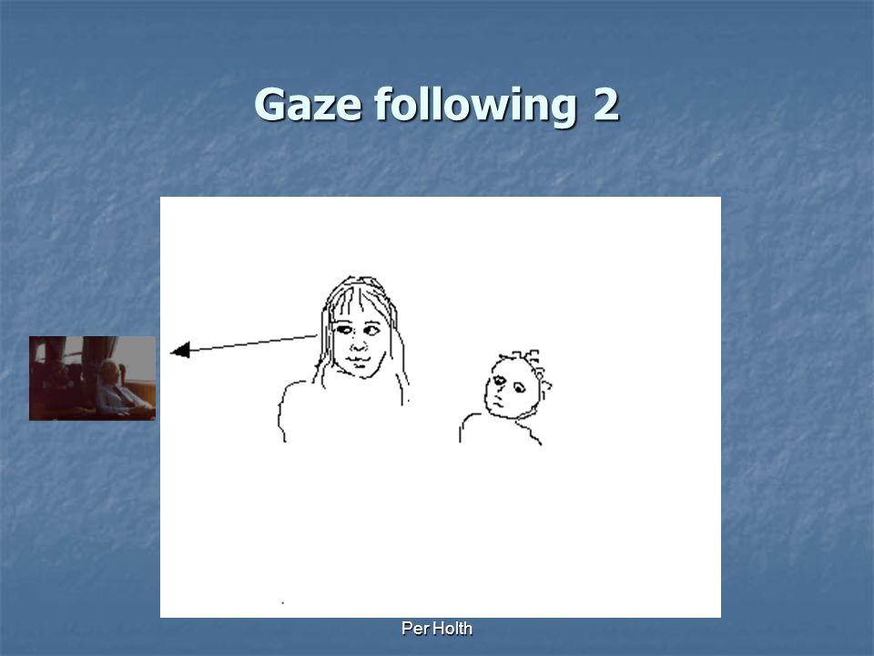 Per Holth Gaze following 1