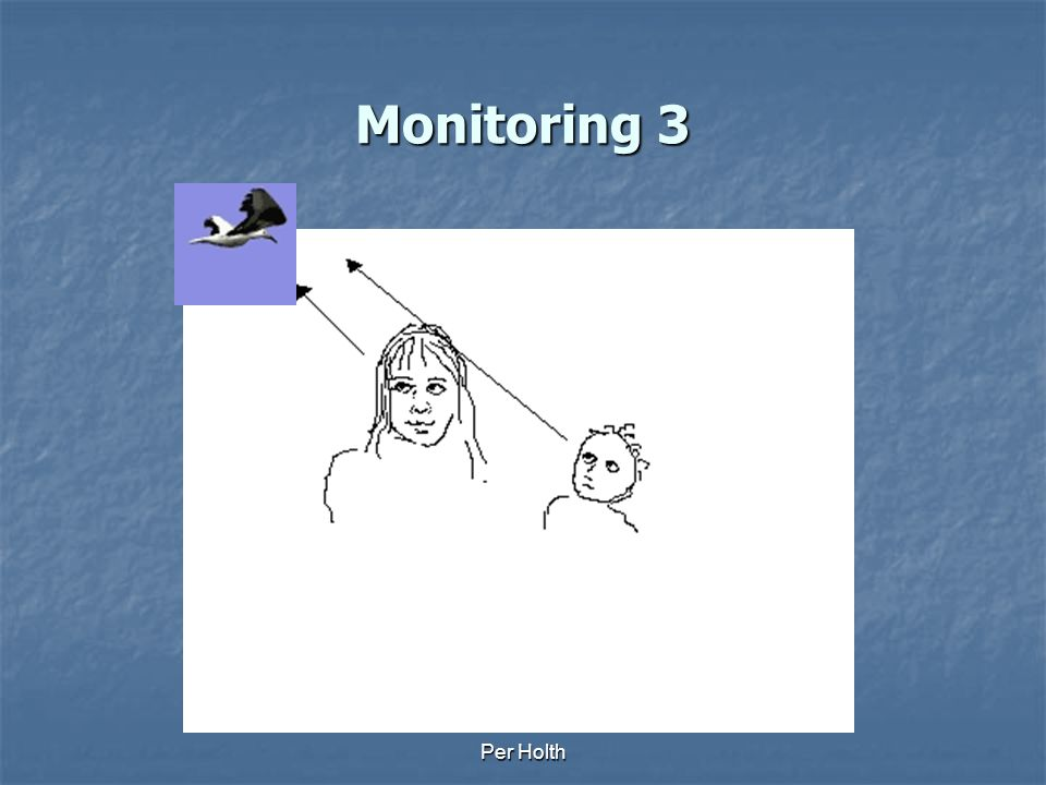 Per Holth Monitoring 2