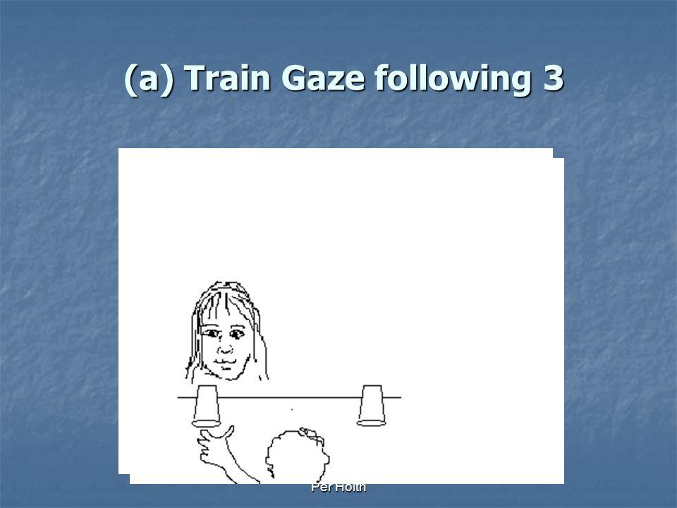 Per Holth (a) Train Gaze following 2