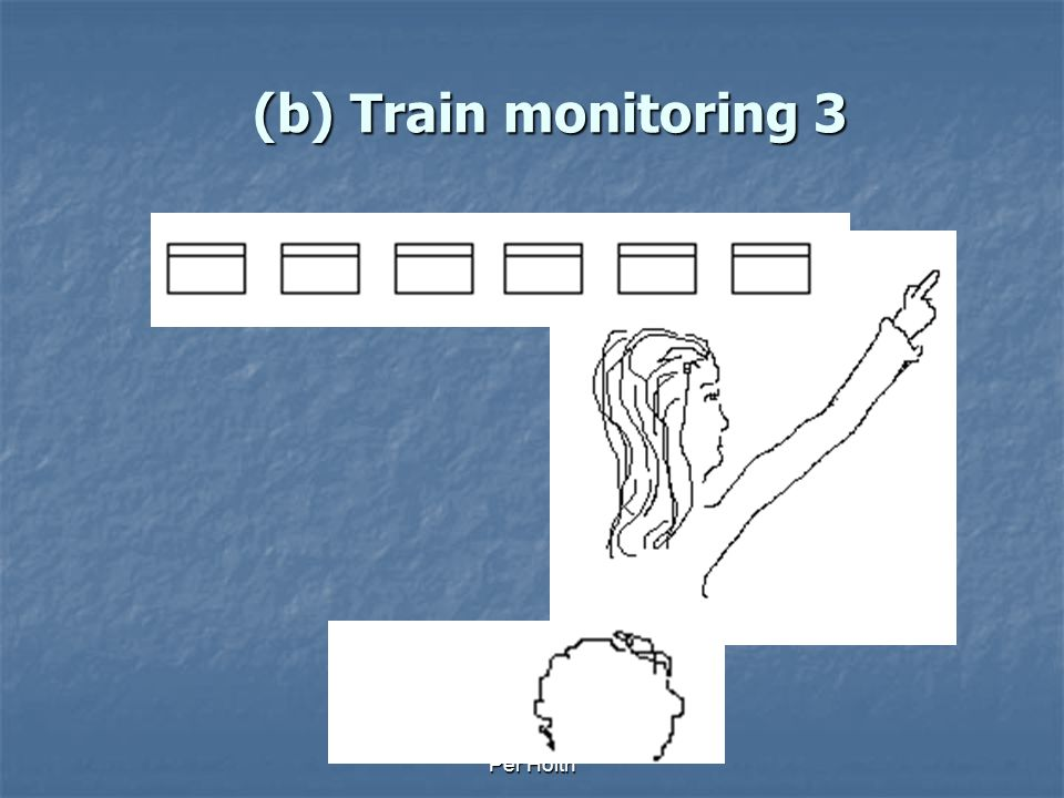 Per Holth (b) Train monitoring 2
