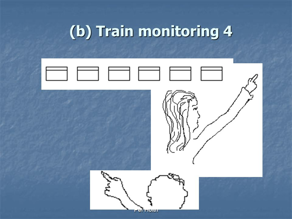 Per Holth (b) Train monitoring 3