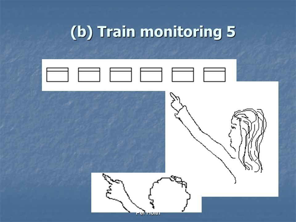 Per Holth (b) Train monitoring 4