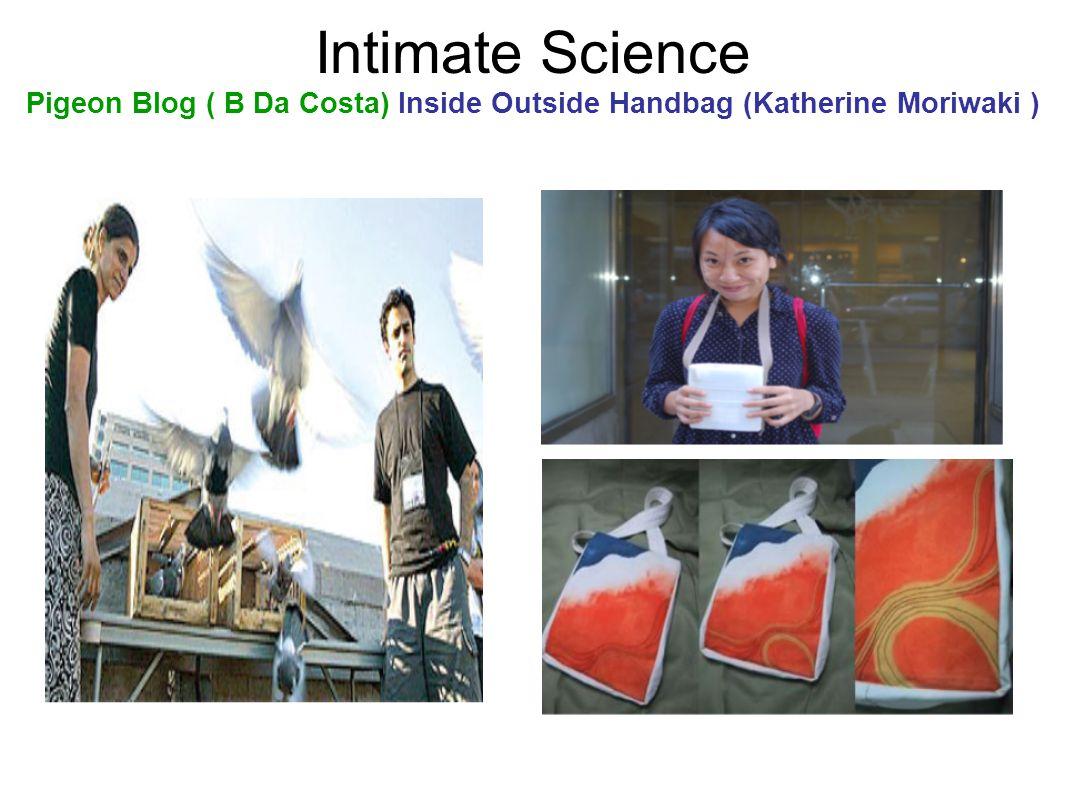 Intimate Science Pigeon Blog ( B Da Costa) Inside Outside Handbag (Katherine Moriwaki )