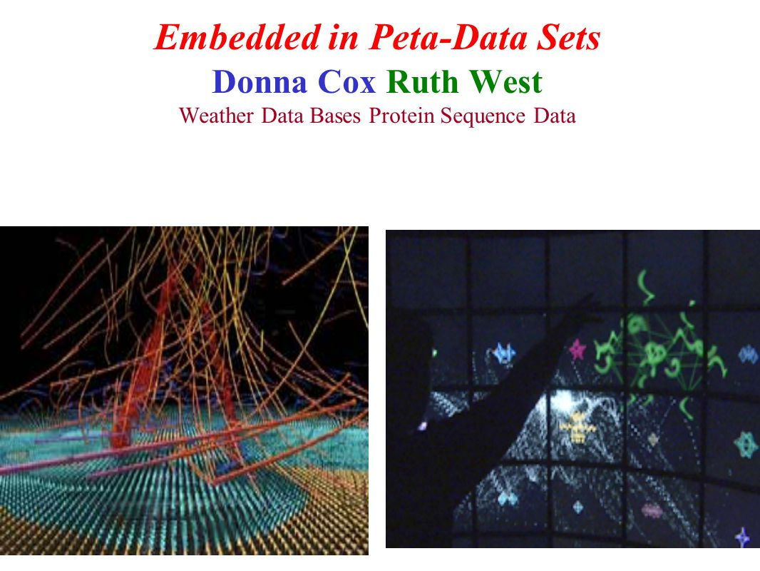 Embedded in Peta-Data Sets Donna Cox Ruth West Weather Data Bases Protein Sequence Data