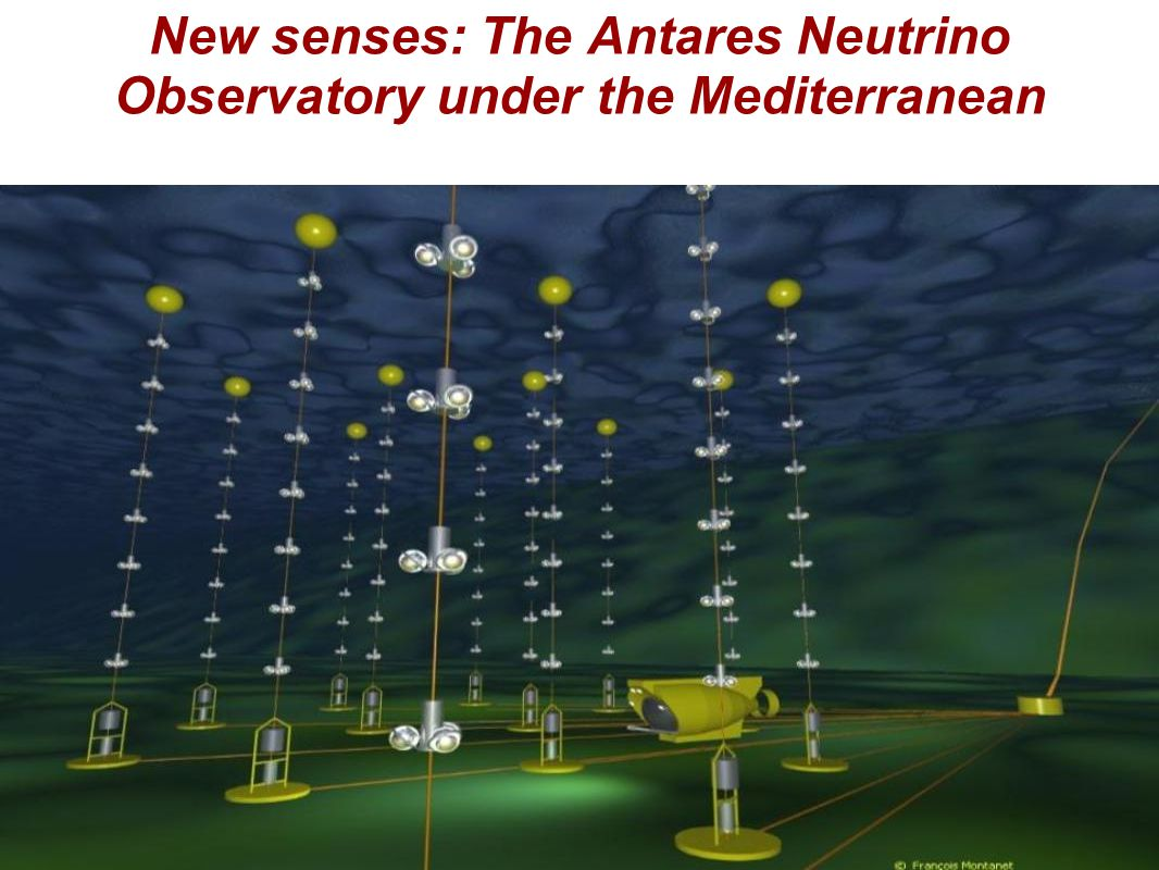 New senses: The Antares Neutrino Observatory under the Mediterranean