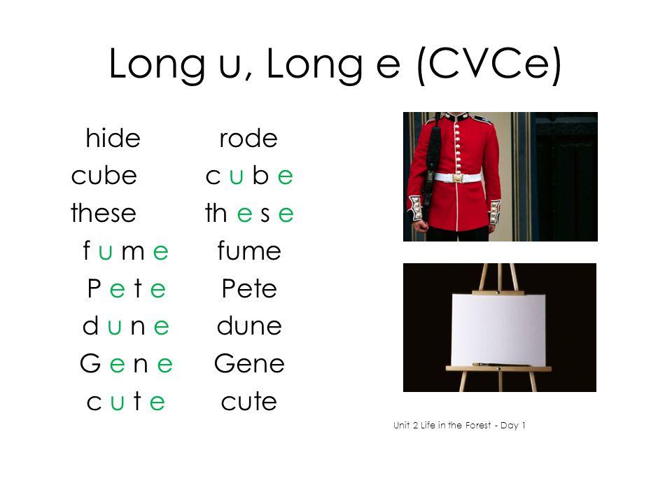 Long u, Long e (CVCe) hiderode cubec u b e theseth e s e f u m e fume P e t e Pete d u n edune G e n e Gene c u t ecute Unit 2 Life in the Forest - Day 1