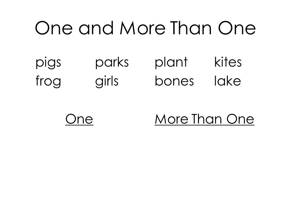 One and More Than One pigsparksplantkites froggirlsboneslake OneMore Than One