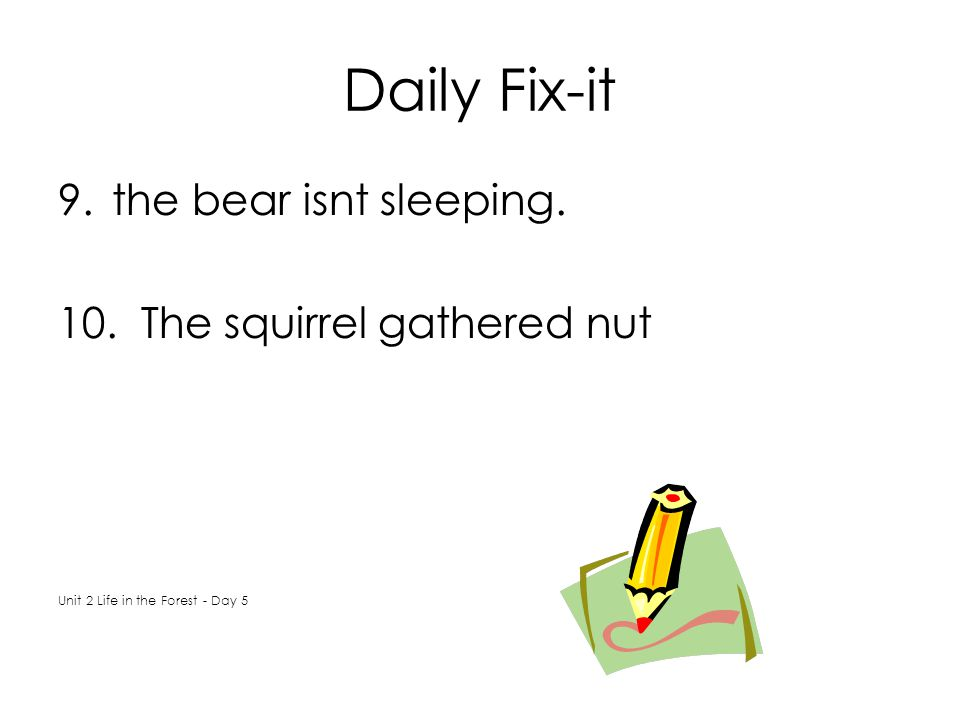 Daily Fix-it 9.the bear isnt sleeping. 10. The squirrel gathered nut Unit 2 Life in the Forest - Day 5