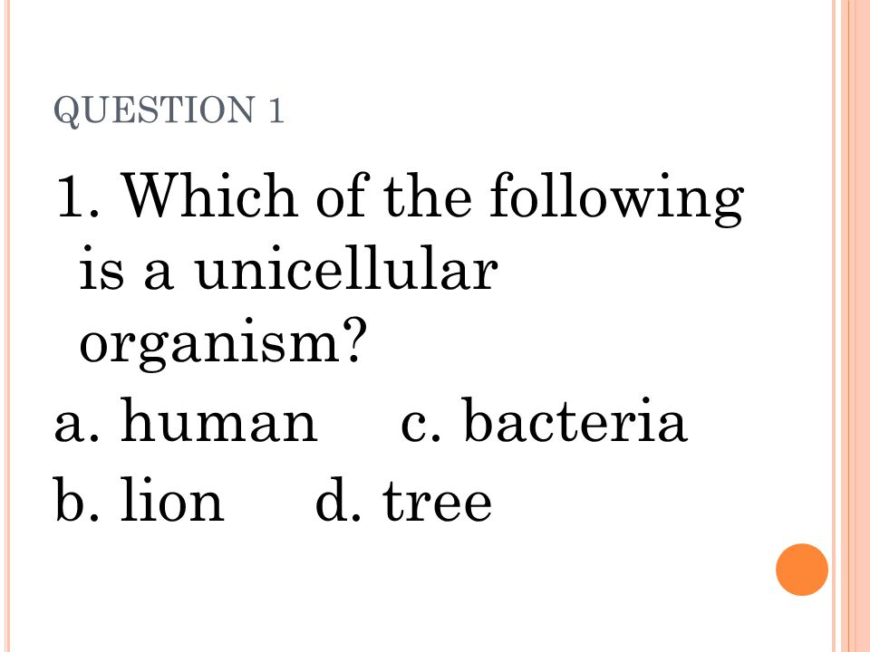 QUESTION 1 1. Which of the following is a unicellular organism? a. humanc. bacteria b. liond. tree