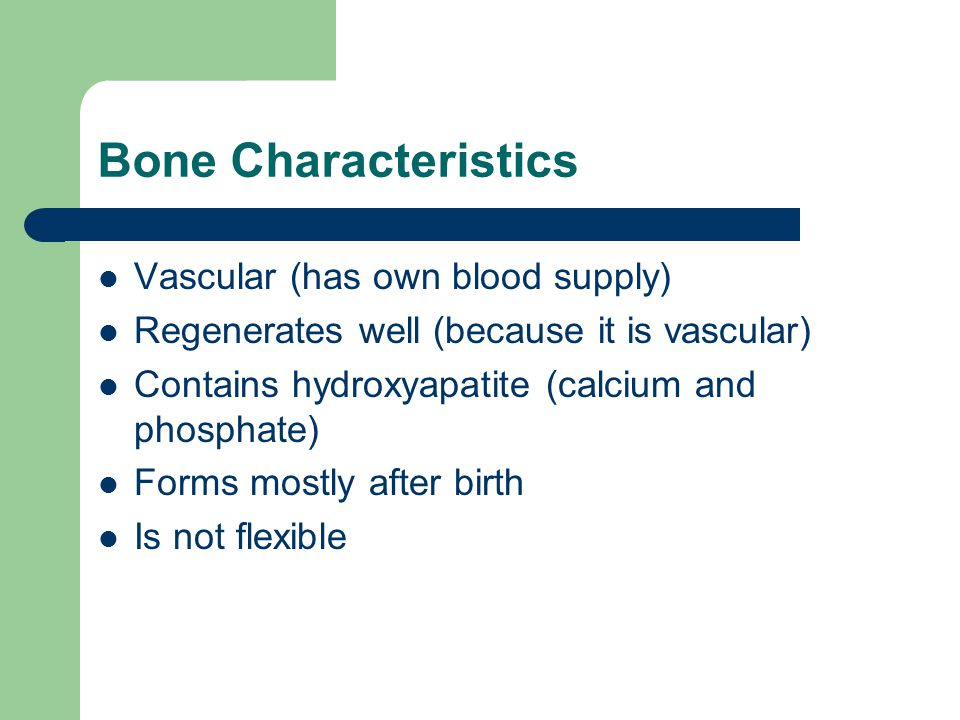 Bone Characteristics Vascular (has own blood supply) Regenerates well (because it is vascular) Contains hydroxyapatite (calcium and phosphate) Forms m