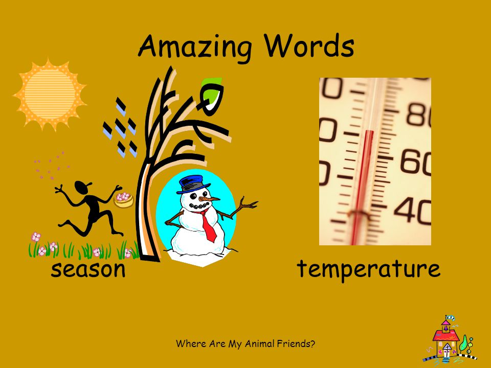 Shared Literature How do we change our lives as the seasons change.