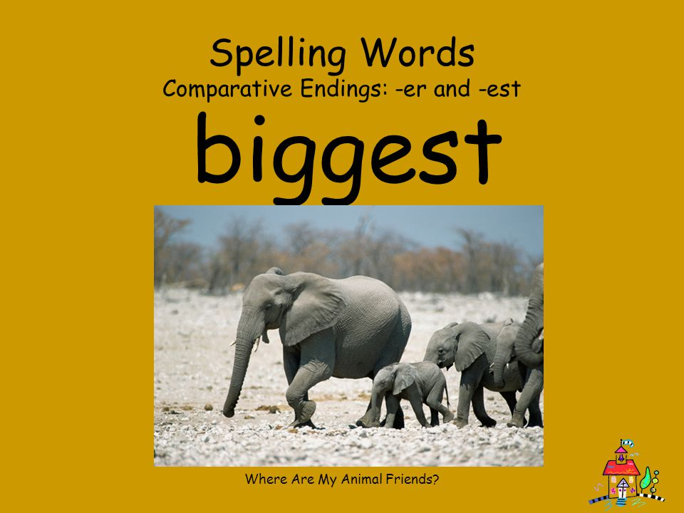 Where Are My Animal Friends? Spelling Words Comparative Endings: -er and -est faster